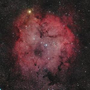 FSQ-106EDで捉えたケフェウス座のIC1396散光星雲 ☆彡