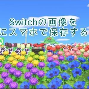 Switchの写真をスマホで保存する方法