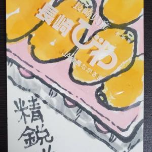 6/4-猫の絵日記、枇杷他絵手紙、熊本城特別公開、読書他趣味