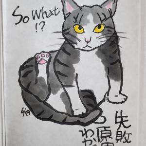 猫絵日記6/19-23、ボランティア絵手紙