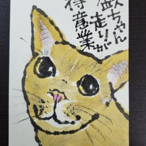 猫の絵手紙他