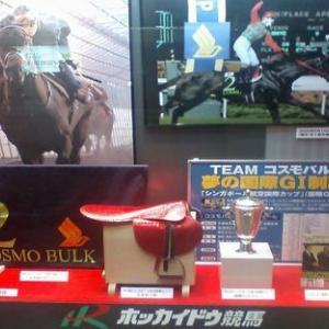 東京  10月19日11レース 富士S【GⅢ】