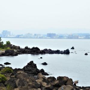 桜島からの展望