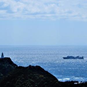 佐多岬の光る海