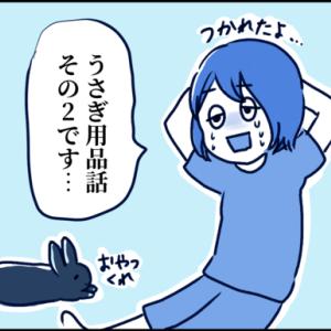 【うさぎの話】うさぎ用品あれこれ(2) ~季節用品・その他~