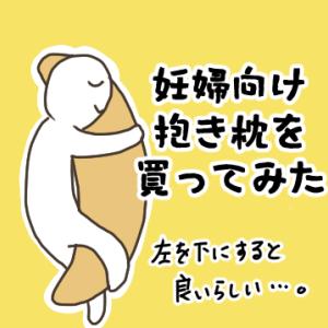 【日常】抱き枕を買ってみたら