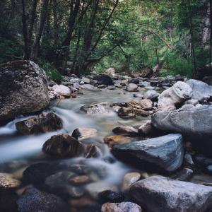 家族で滝を見る!河内長野の光滝寺キャンプ場へ