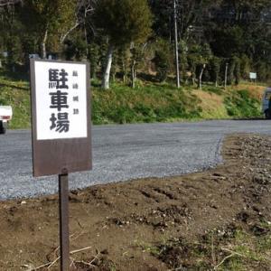 島崎城跡の環境整備を行いました。