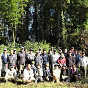 島崎城跡の環境整備活動を行いました。