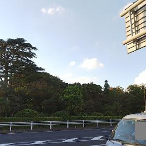 柏市の森(野馬土手)と、世界大戦記念碑と ~千葉県柏市の街並・史跡・石碑