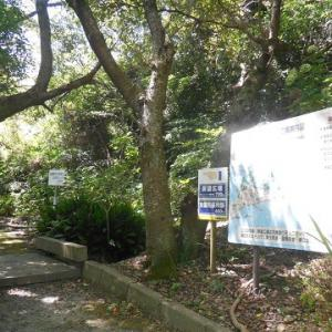 魚雷見張所跡と、士官兵舎跡と、階段と、点火試験場と ~山口県周南市大津島の史跡・戦争遺構