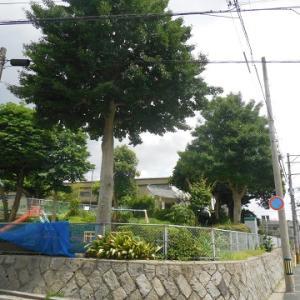 菅原神社 ~福岡県北九州市戸畑区の神社