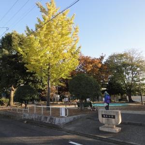 荒子観音寺 ~愛知県名古屋市の寺院