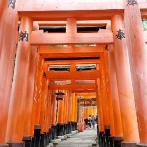 今日は、京都の伏見・宇治に出撃。