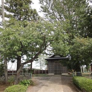照西寺 ~茨城県つくば市手子生(てごまる)の寺院