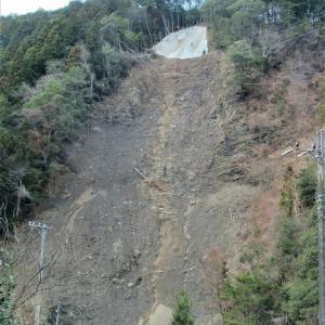 土砂崩れした崖のてっぺんに!