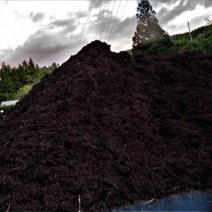 ウッドチップ肥料を入手する
