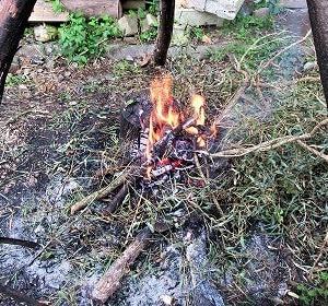 焚き火de歓迎会