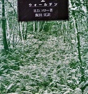 『森の生活』は魂のゆりかご