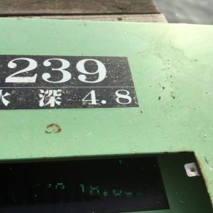 椎の木湖 ファイルナンバー132