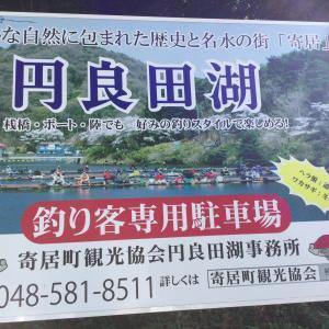 円良田湖 ファイルナンバー011