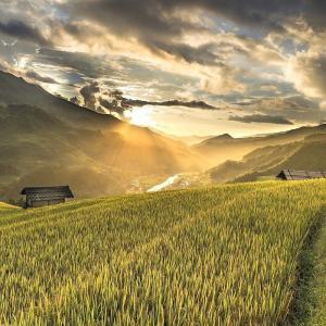 新米の季節! お米の栄養は米糠にある!