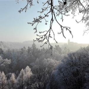 1月20日は大寒! 大寒卵で一年を健康に過ごしましょう