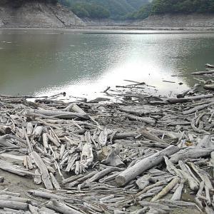 近場のダム