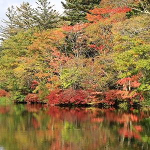 軽井沢 紅葉の始まった雲場池