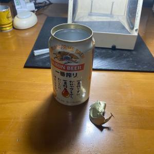 アルコールストーブを作ってみたバイ ~アルミ缶~
