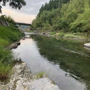 矢部川水系は、明日から禁漁