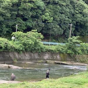厳木川に来てみました。
