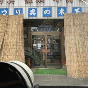 2020/08/01 星野川釣行⤵︎