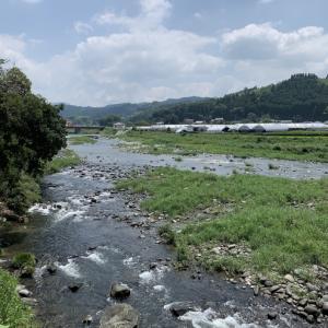 2019/08/17 矢部川釣行⤵︎(;_;)