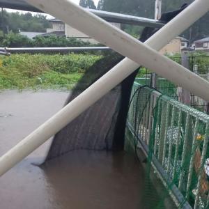 台風15号 千葉市上陸