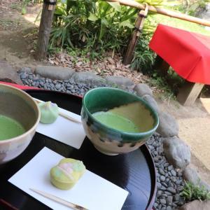 〓六義園〓日本庭園「六義園」のリコメンド in 文京区🇯🇵