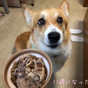 北海道旅行〜完結(札幌〜函館〜自宅)