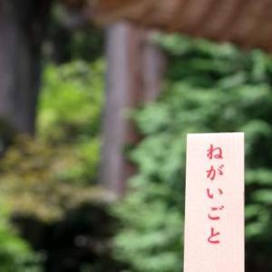50代主婦の群馬旅行記・榛名神社で願かけしてきた