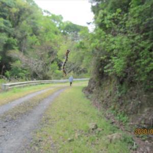 お菊山とその周辺