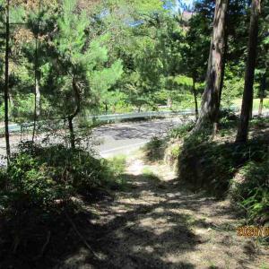 昭和池から新滝の池へ