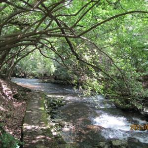 るり溪 その2
