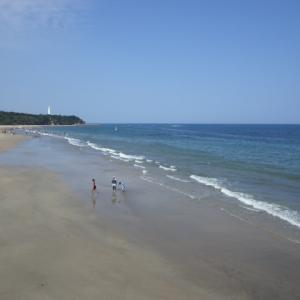 やっぱり夏は⁉ The海浜・・・ではないかと思いました(^^)/
