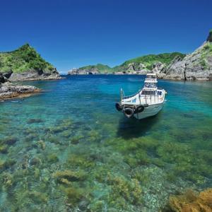 この夏は透明度抜群の素敵な海で泳いでみない?南伊豆の穴場海水浴場って?