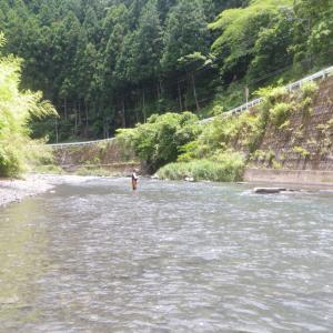 静岡県の川にお邪魔しました