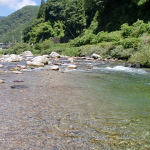 昔より良くなった川はないかな