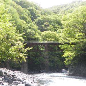 遠山川をさかのぼる