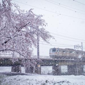 春なのに雪の一日
