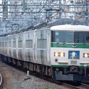 今や最古参、185系(東海道線・山手線)