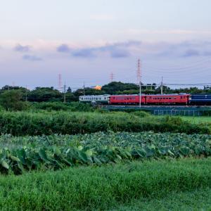 武蔵野線をキハ回走る