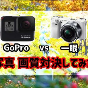 GoProは一眼の代わりになるのか? 一眼 vs GoPro写真画質対決してみた